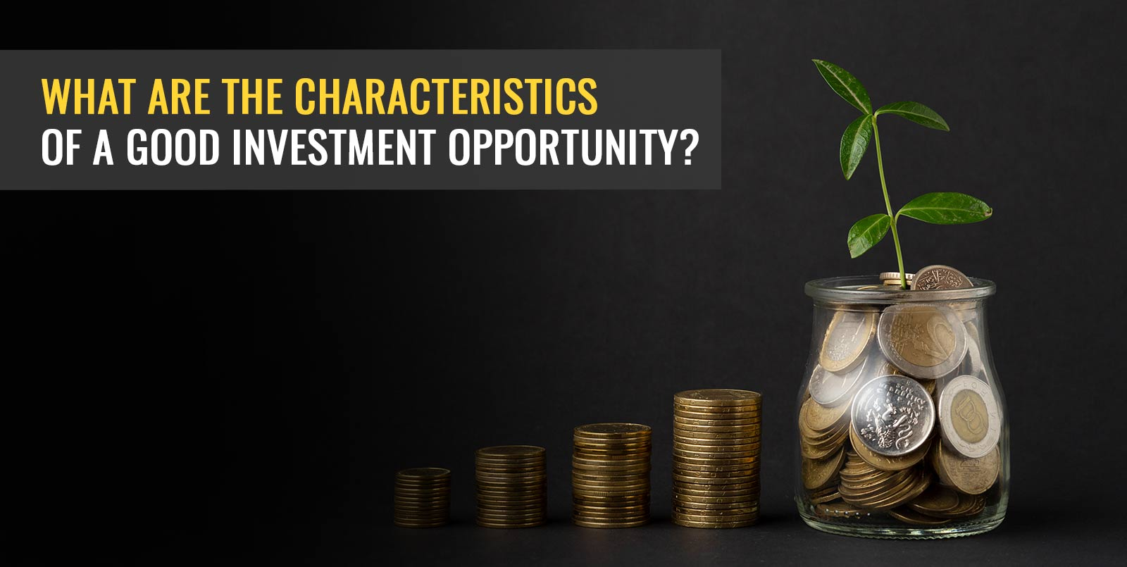 What Are The Characteristics Of A Good Investment Opportunity?