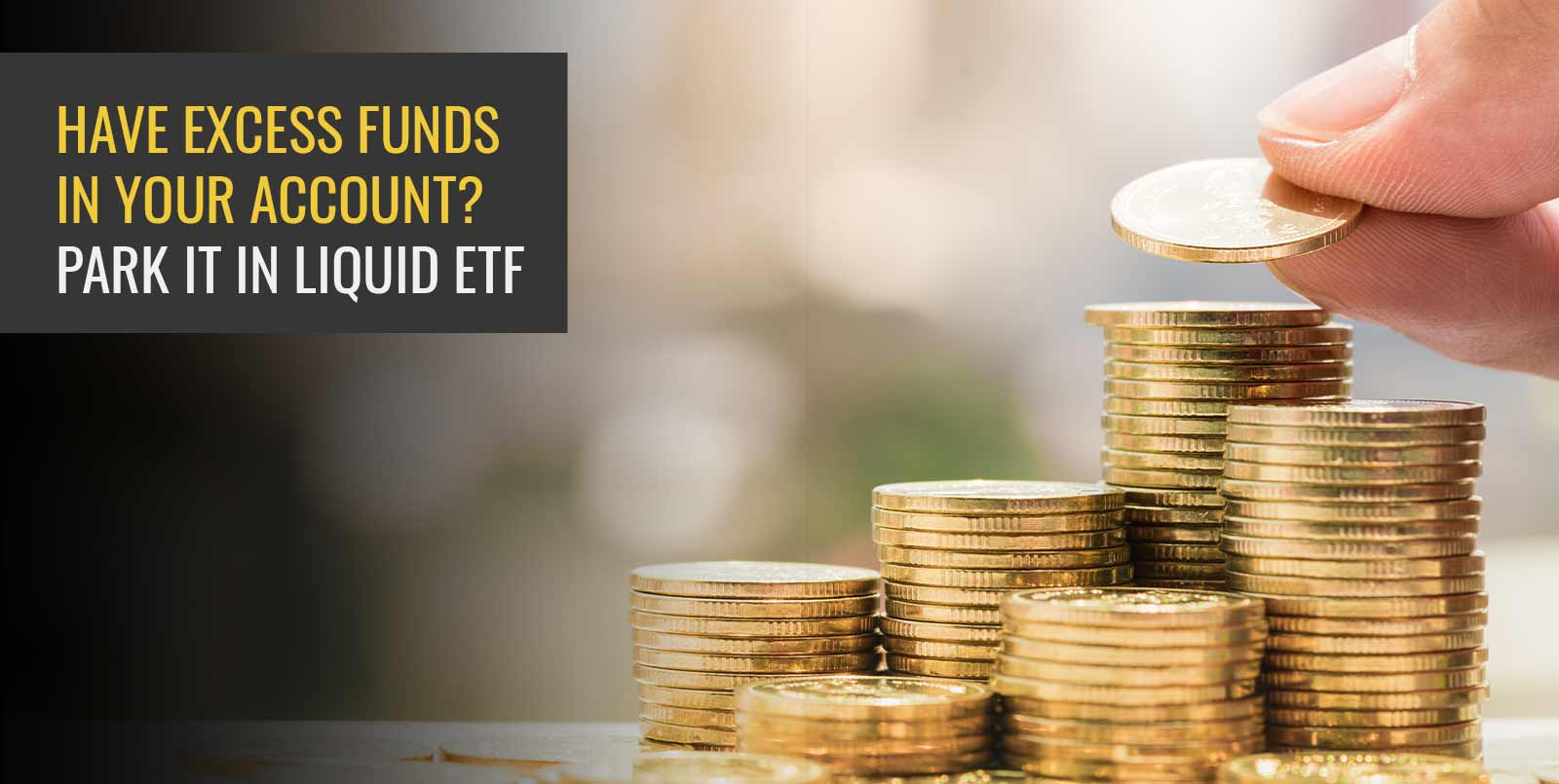 Have excess funds in your account? Park it in liquid ETF