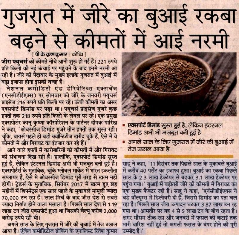 Softening in price to increase growing cumin seeds area in Gujarat